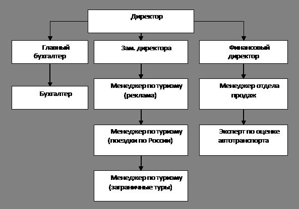 Организационная структура управления туризма
